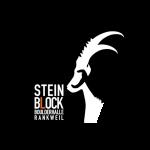 Steinblock Boulderhalle Rankweil